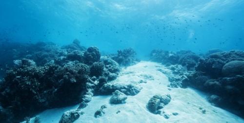 """Según científico, el calor """"perdido"""" se encuentra 300 metros bajo el océano Atlántico"""