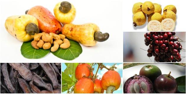 frutasdelcaribe