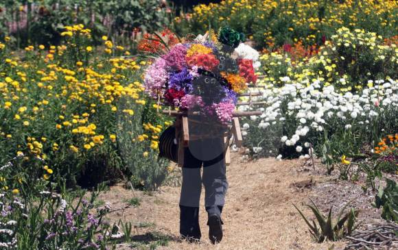feria-flores-medellin