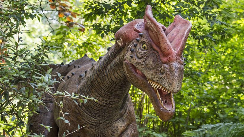 dinosaurio-2